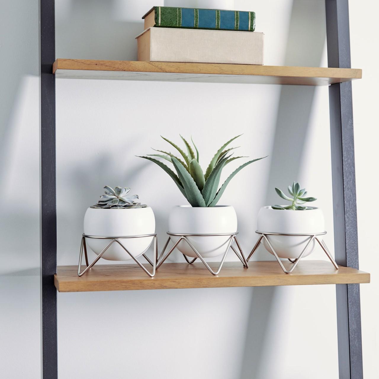 Schlichte Potsy Tischvasen, modern und bezaubernd
