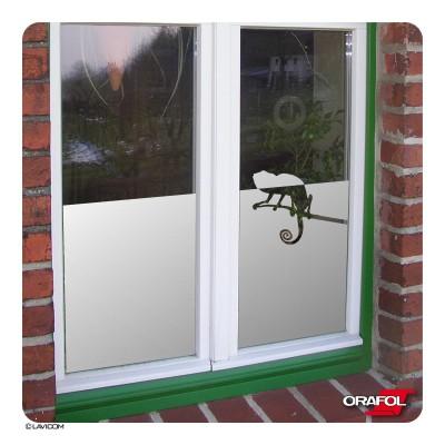 Sichtschutzfolie Chamäleon Fensterfolie + Maßanfertigung